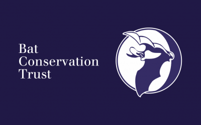 Bats & Artificial Lighting Symposium 2019 – call for abstracts